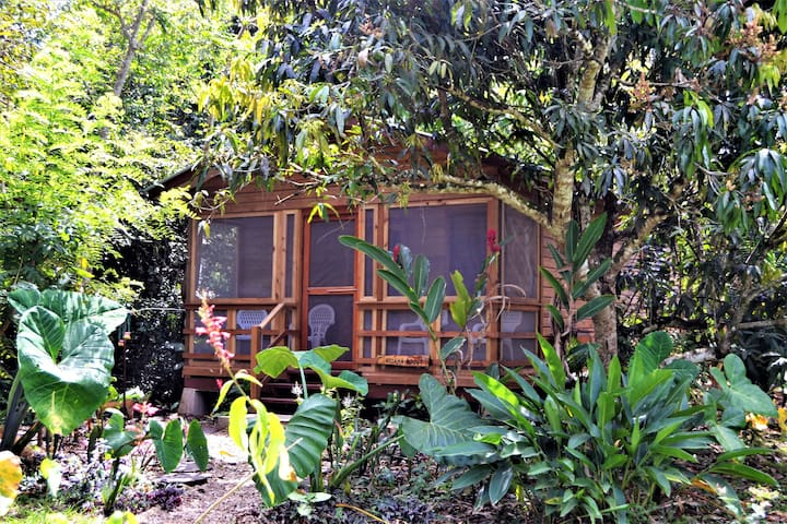 Iguana Roost,  A Fully Equiped 2 bedroom  Cabin