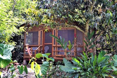 Iguana Roost A  fully equipped 2 bedroom Retreat