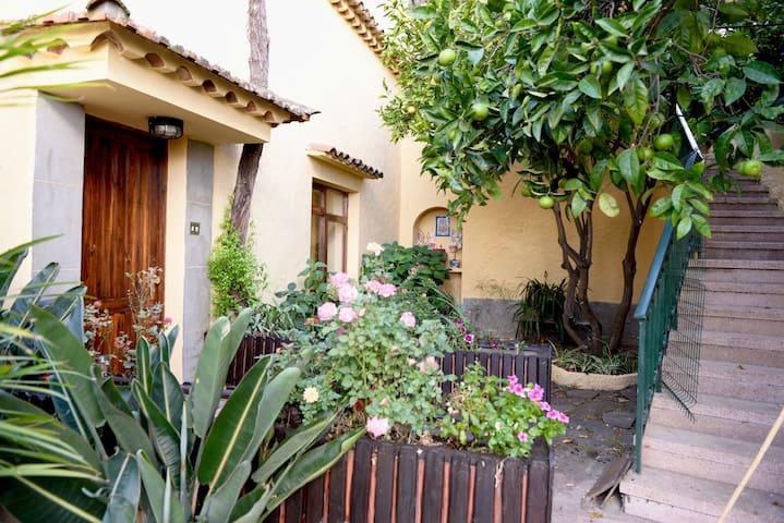 Casa rural en Utiaca - Magníficas vistas - Vega de San Mateo - House