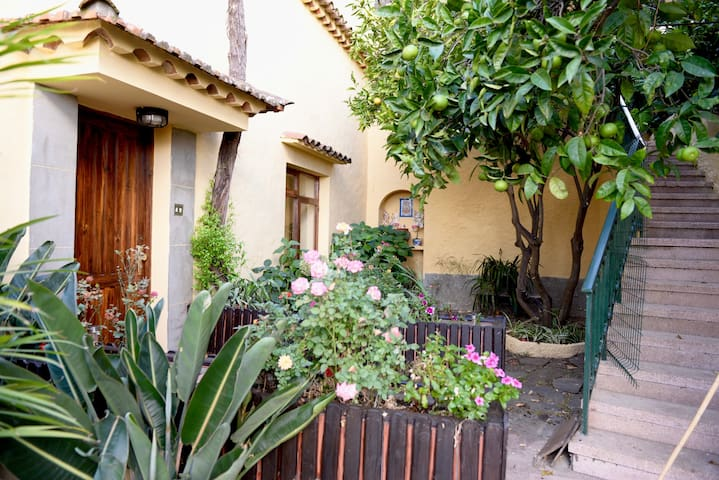 Casa rural en Utiaca - Magníficas vistas - Vega de San Mateo - Ev