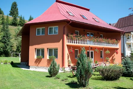 5 - Cozy room in the heart of Apuseni Mountains
