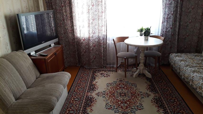 Уютная 1-комн. квартира с Wi-Fi по ул. Лазо
