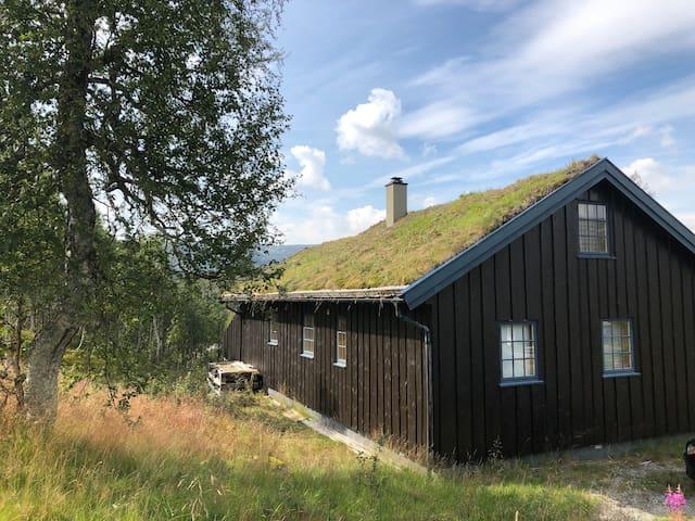 Koselig hytte nær Haukelifjell skisenter