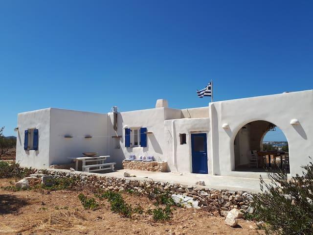 THE WHITE HOUSE 2 exact white point explore island