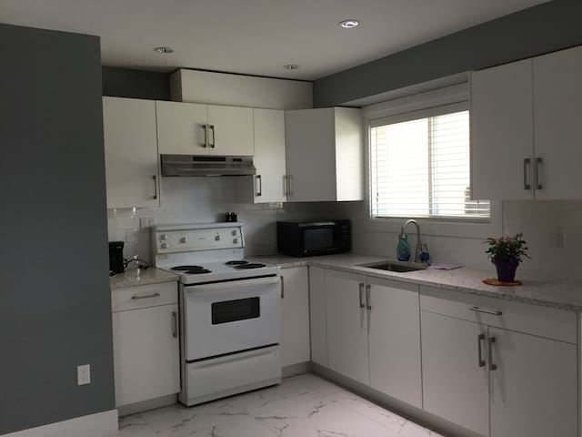 1 bedroom newly renovated private suite in Surrey