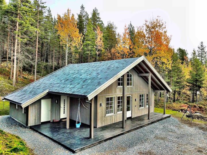 Ny moderne hytte i flott fjellterreng
