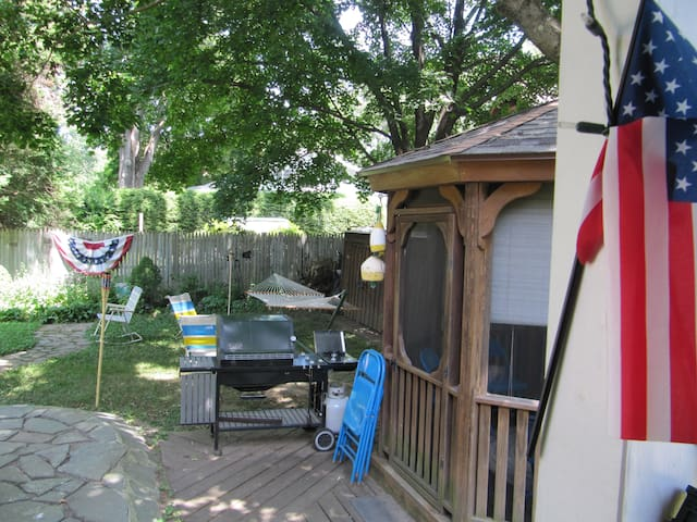 Gas grill and gazebo