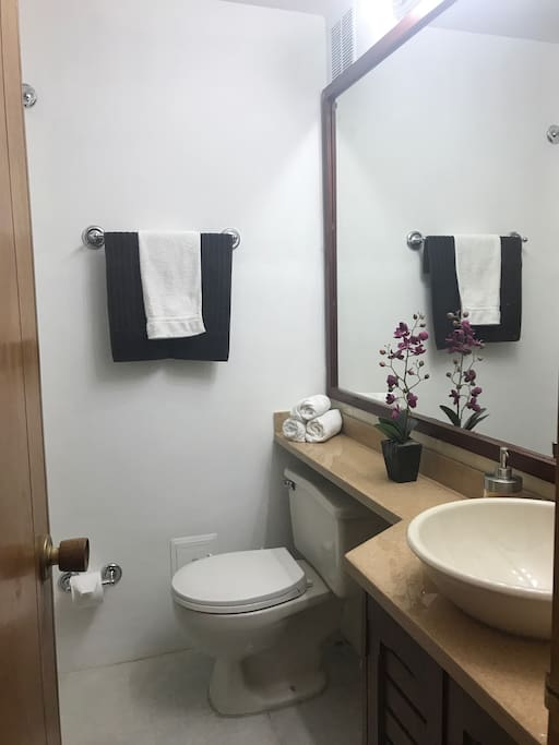 Secondary bathroom / baño secundario o auxiliar