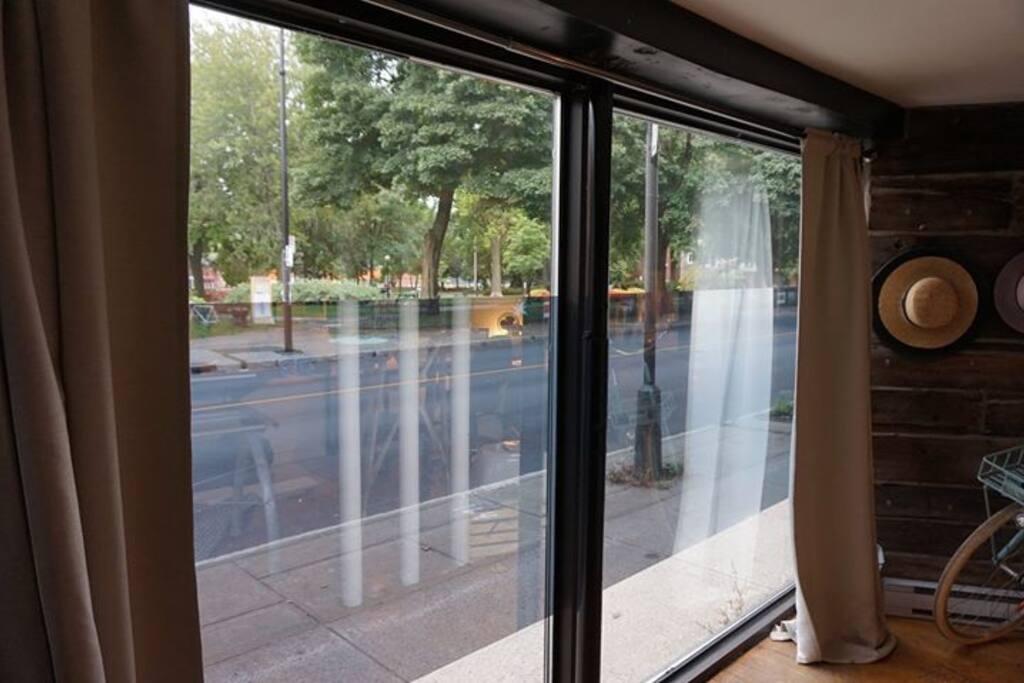 Vue sur le parc, baies vitrées sans tain.
