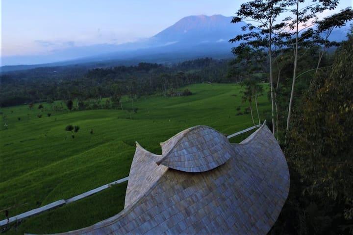 Nyan Bali - A Bamboo House Escape