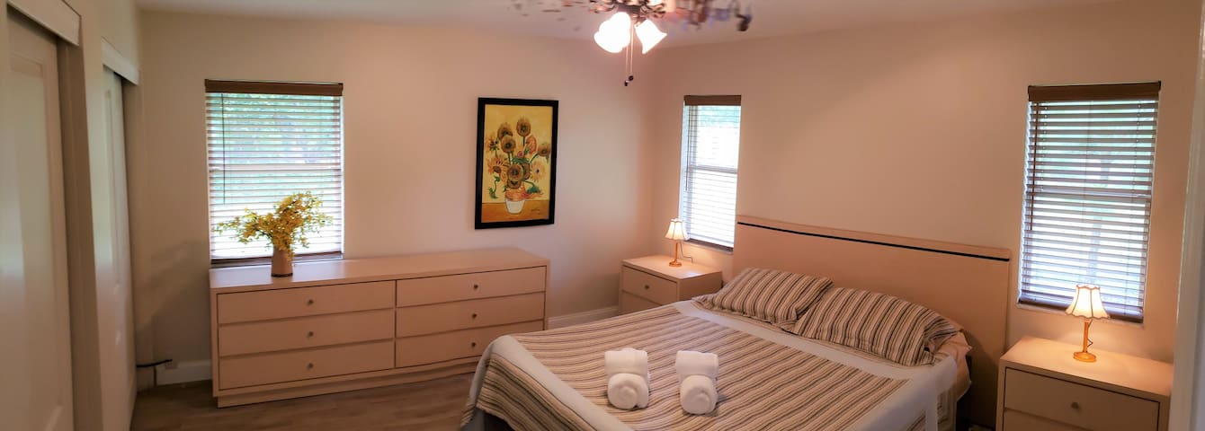 Master Bedroom with King Size adjustable Bed