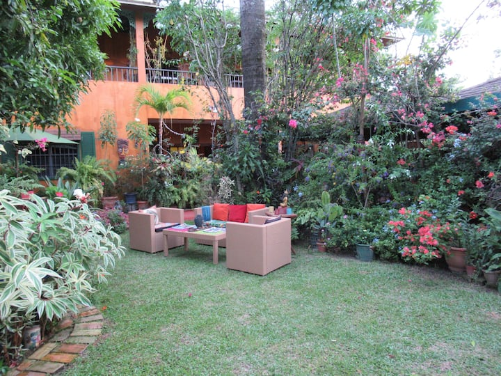 Rainforest B&B: Oasis in the heart of Georgetown