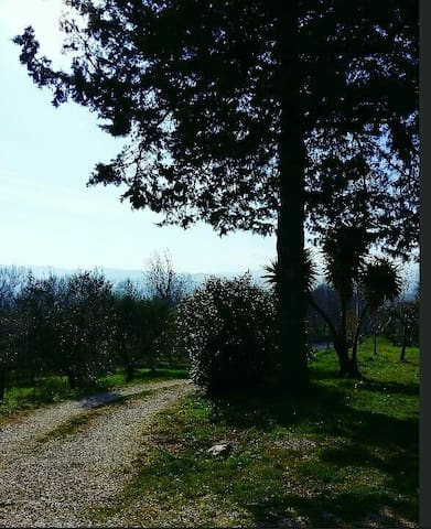 Accogliente tra colline e mare - Roseto degli Abruzzi - Hus