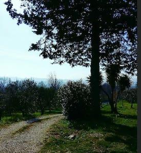 Accogliente tra colline e mare - Roseto degli Abruzzi