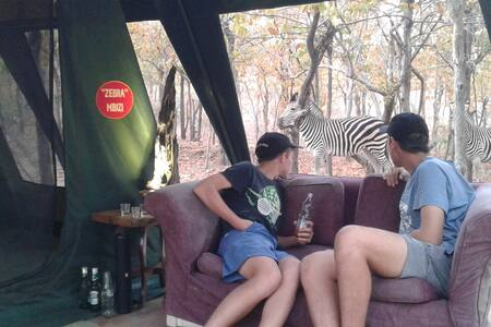 "Warthogs Safari Camp -""Classic"" Double Safari Tent"