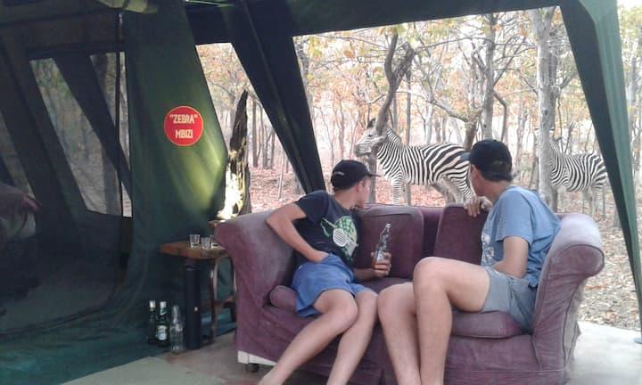 "Warthogs Safari Camp - ""Junior"" Double Safari Tent"
