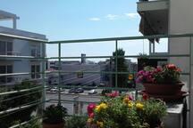Balcony/View from the balcony