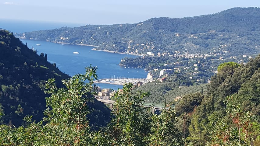 APP.TO NELLA NATURA INCONTAMINATA CON VISTA  MARE - Rapallo - Apartment