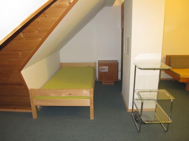 Podkrovní pokoj v klidné části - Brno - House