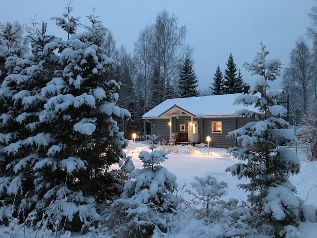 Nice cottage on the lake