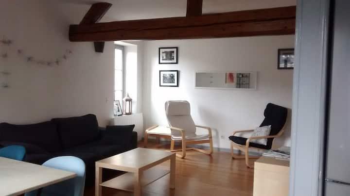 Chez Sarah METZ Ville F2 46 m2