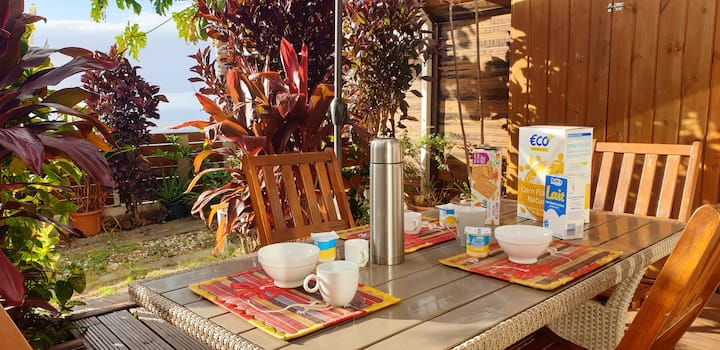 House with 2 bedrooms in Saint paul, with wonderful sea view, enclosed garden and WiFi - 12 km from the beach
