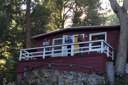 Beautiful Palomar Mountain Getaway - NEW RENTAL - Palomar Mountain - Kabin