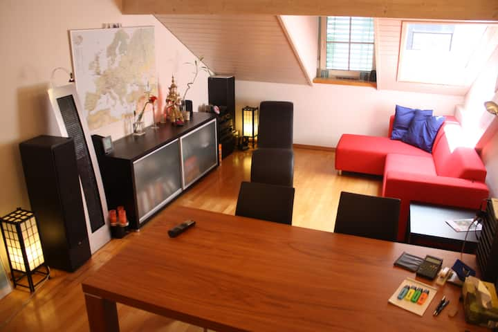 Cosy 2 room apt right at Zurich main station
