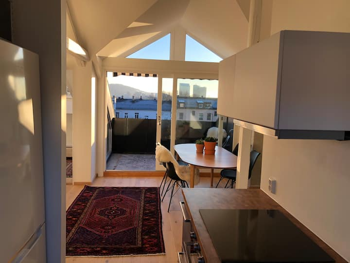 5 rom private top floor with balcony sentral Oslo