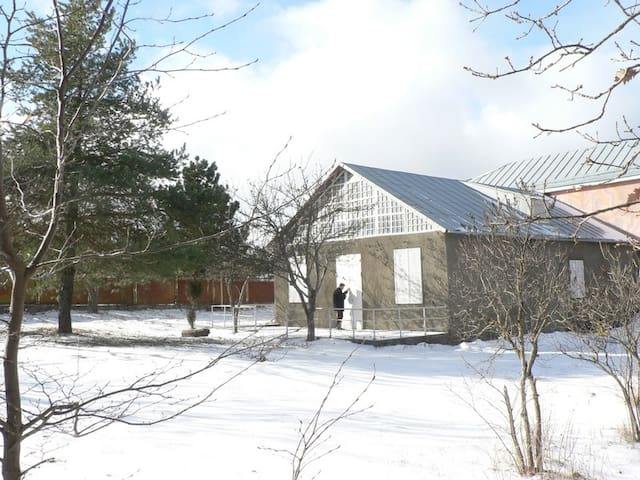 Spacious Holiday House/სახლი კოჯრის ტყის პირას
