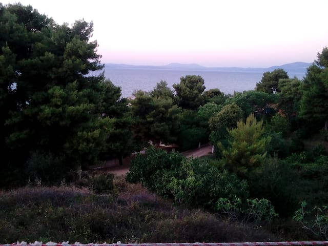 Calm house gorgeous seaview