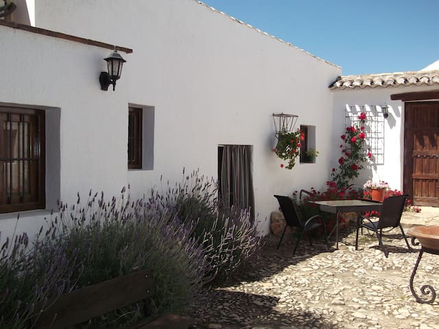 Lovely and quiet apartment in Andalucía's center