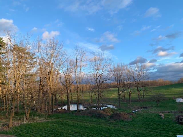 Restoration Farm - Simple & Sustainable Living