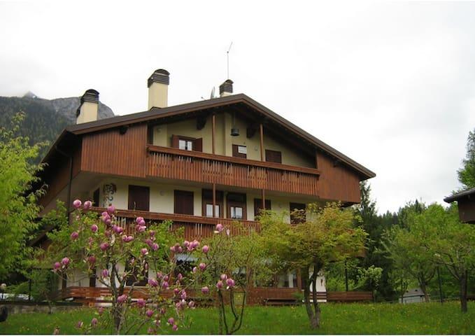 bellissima mansarda di montagna - località pian grande  Cibiana di Cadore  - Apartment