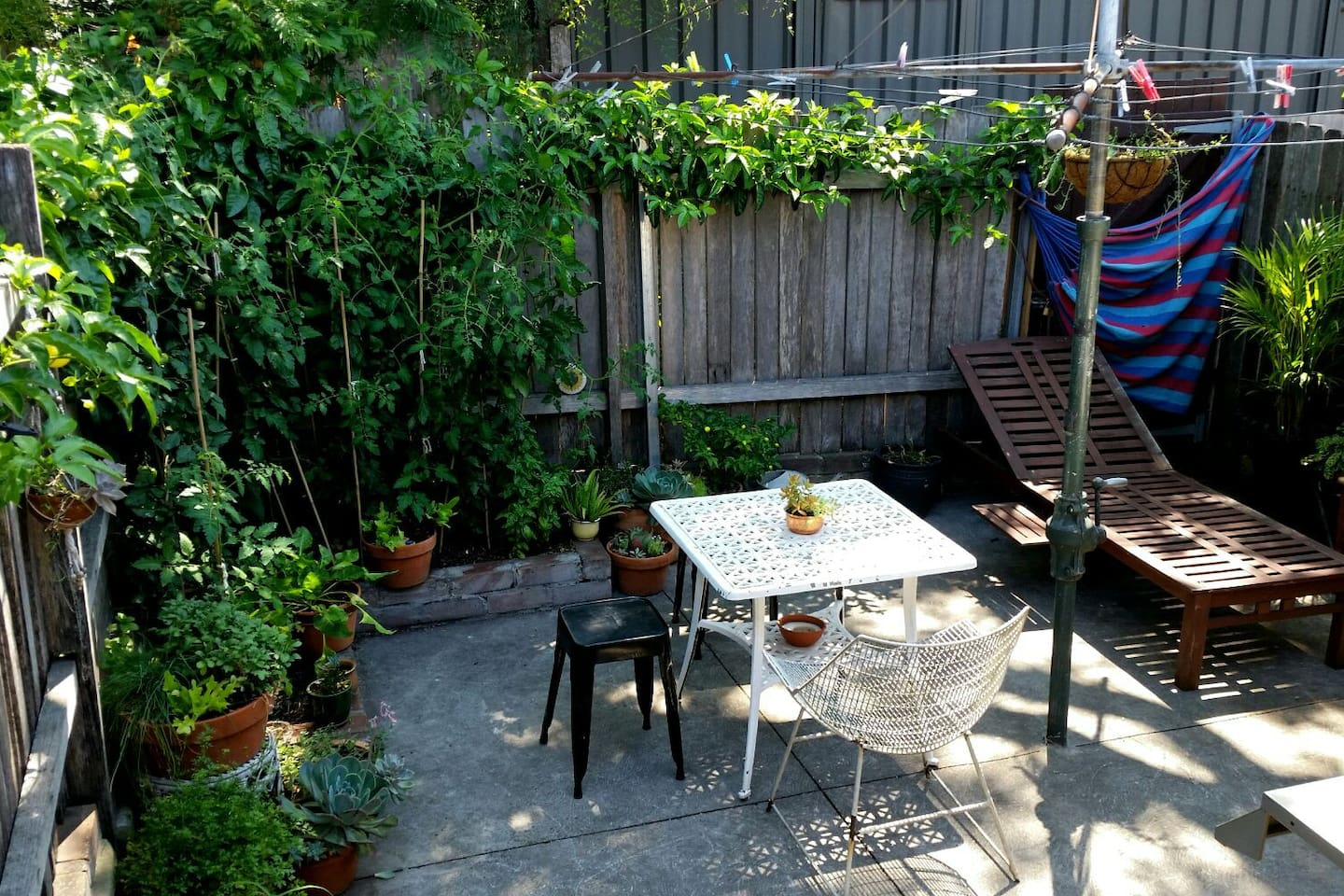 Leafy private courtyard with BBQ, sun lounge and herb garden (Bonus: iconic Australian Hills Hoist clothesline).