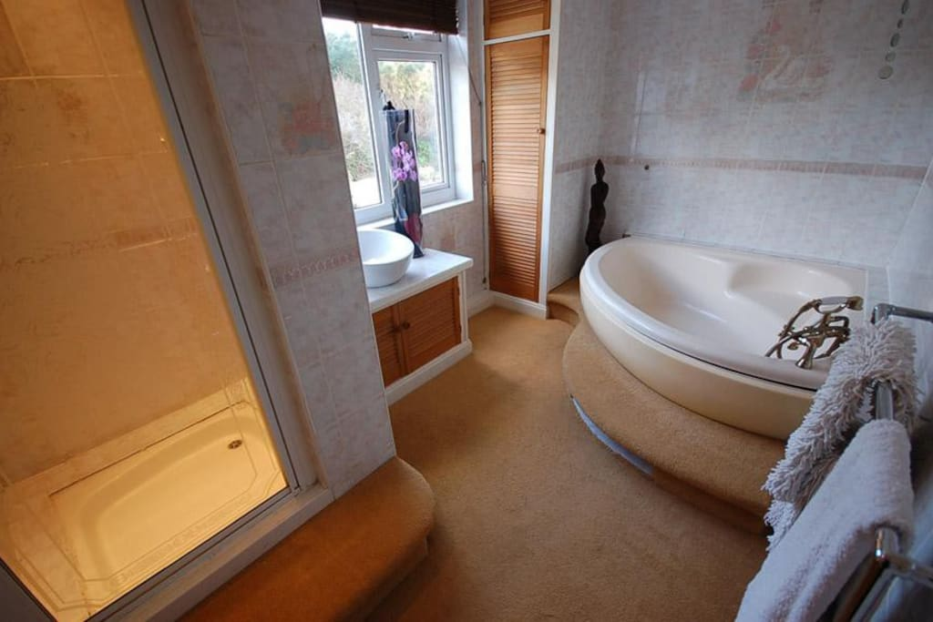 Your luxurious private bathroom.
