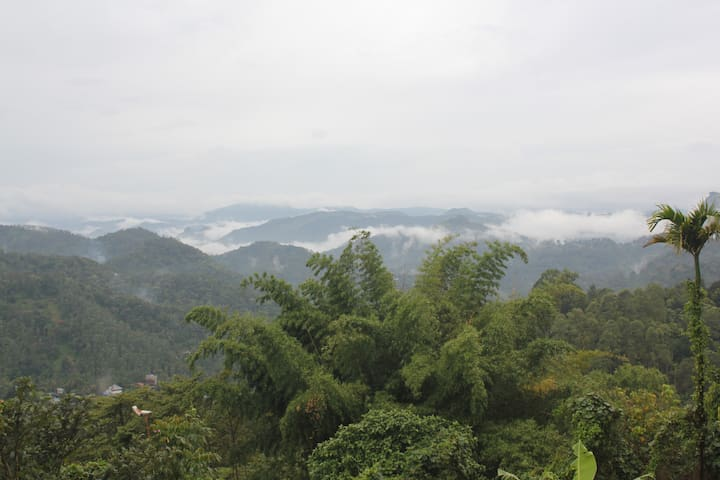 Relax and enjoy of the view of the  Munnar.
