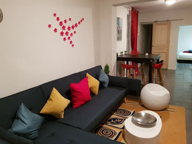 Jolie appartement moderne roanne