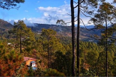 Kaaphal Hill - Into The Himalayas.