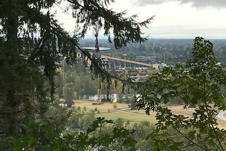 Midcentury Citadel Overlooking University