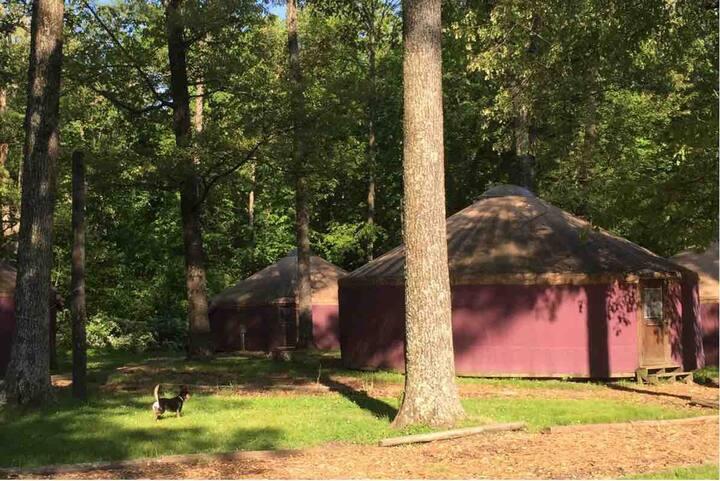 Camp Manitowa-Red Yurt #1