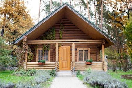 Guest House - Kiev - Bed & Breakfast