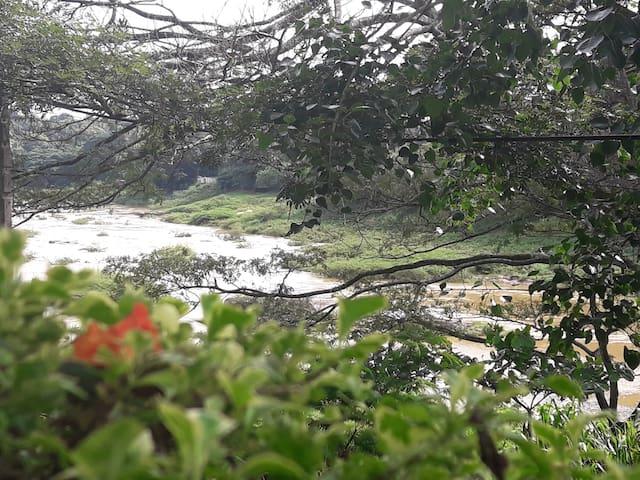 Riverine Cascade