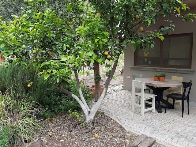 sivan's garden cabin - HaYogev - Casa de campo