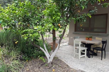 sivan's garden cabin - HaYogev - 小木屋