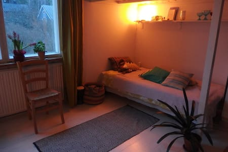 Need a room close to the centre? - เฮลซิงกิ - บ้าน