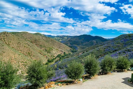 Guesthouse: spectacular vistas, privacy and nature
