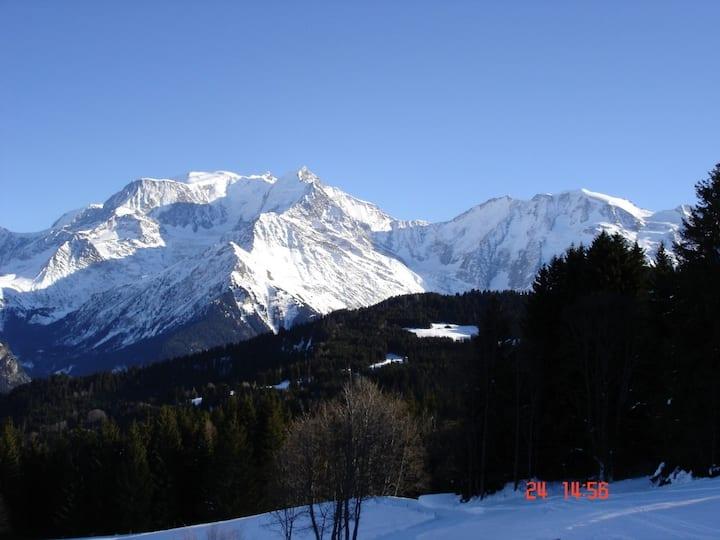 Ski in-ski out/summer swimming pool