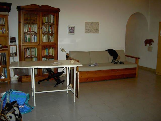 Large single room in quiet flat