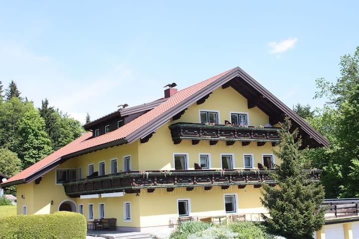 Luxuriöse Ferienwohnung in Krispl/Salzburg mit Swimmingpool